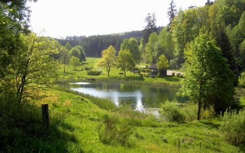 Kneippanlage Pfaffenhausen - Fischteich